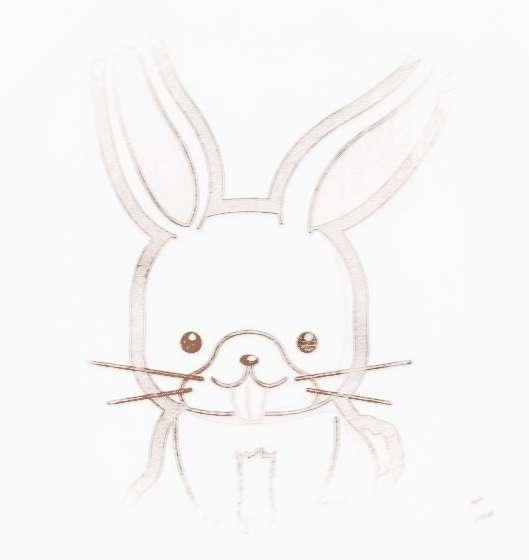 2014年生肖兔的總運勢