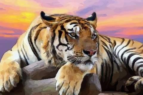 属虎2021年运势及运程如何,2021年属虎人的全年运势