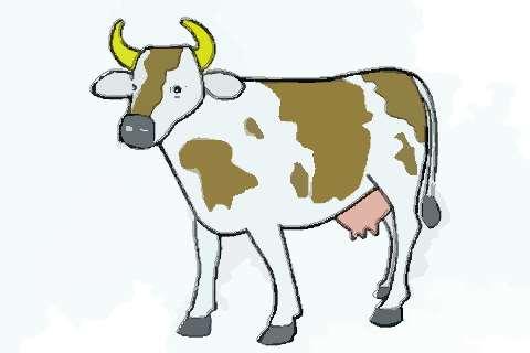 属牛人2021年健康平安运势