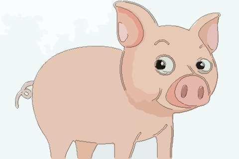 属猪人2022年事业官运