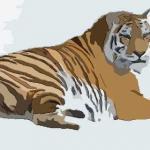 属虎2022年运势及运程 2022年属虎人的全年每月运势详解