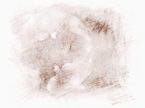 双鱼座好听的英文名图片