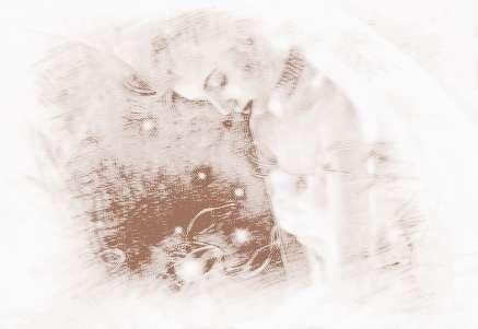 天蝎座2014年运势