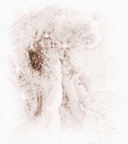 狮子座的星座配对女生优势座男的水瓶图片