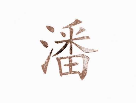 """潘姓   潘姓是一个汉字姓氏,在《百家姓》中排名第43位,潘氏在2007年中国姓氏排行榜上名列第五十二位,属于超级大姓系列,人口约八百万,占全国人口总数0.48%。朝鲜半岛及越南亦有潘姓氏族居住。      潘姓起源说法   (一)始于芈姓   源于""""芈""""(m )姓,出自春秋时楚国公族""""芈潘崇""""之后,属于以先祖名字为氏。公讳崇字道安,楚成王时大夫,穆王立,以其太子宫予公,使为太师,掌国事,环列之尹,楚国大治,有认楚公族后以字为氏,列公为潘姓始祖之一。"""