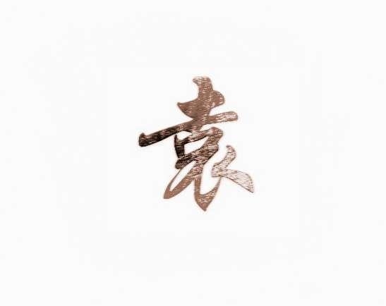 姓氏起源     袁姓,是中国的百家姓之一,虽然不怎么多,但是源自于圆形