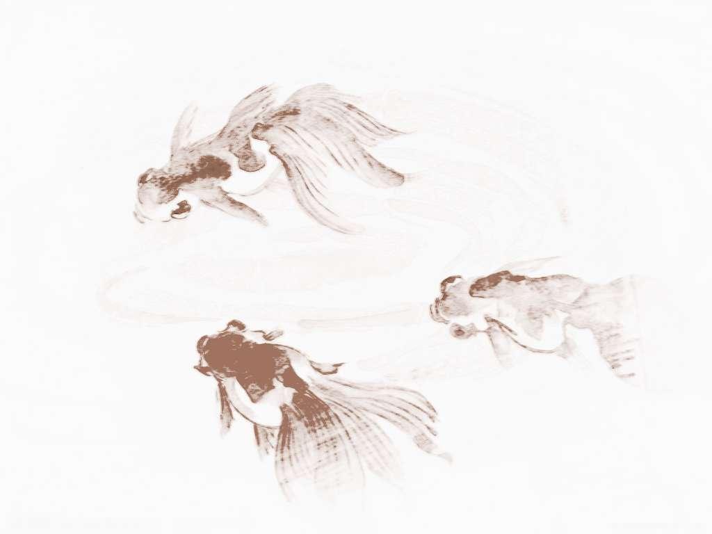 养金鱼,如鱼得水,其实找金鱼鱼缸风水方位,数风水方位,动物感受最真.