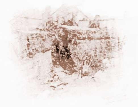 合江亭咬人也被传说是成都府南河出现 僵尸图片