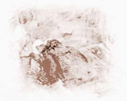 十大灵异事件之95成都僵尸事件_祥安阁风水文化