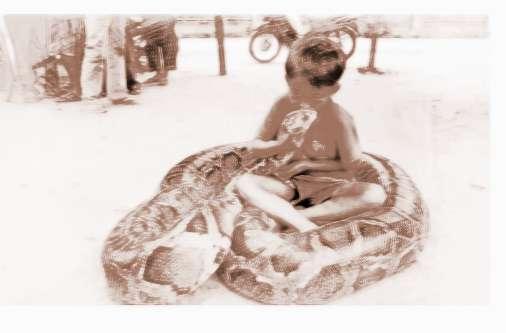 梦见蛇缠身体 周公解梦之梦到蛇缠身体 -做梦梦见蛇缠身体 周公解梦