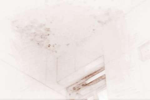 梦见屋顶滴水