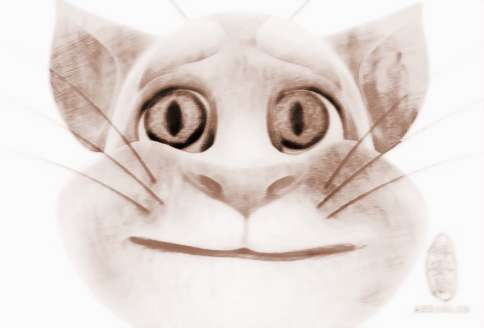 猫面具图案大全