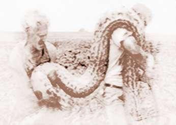 梦见被蛇吃要注意什么