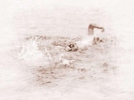 �粢�在江河里游泳�D片 36701 561x421