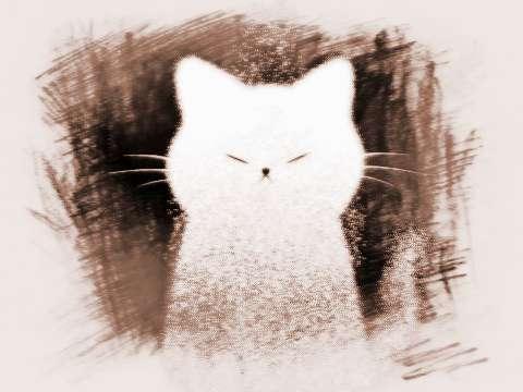 做梦梦到猫怕