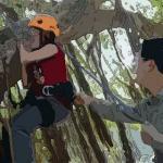 梦见孕妇爬树