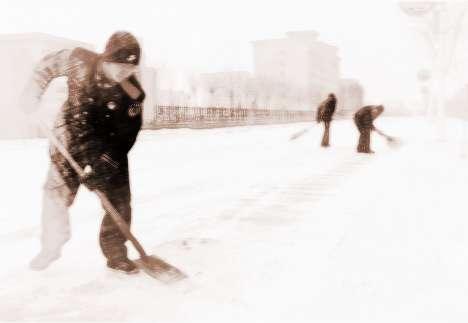 梦见铲地雪