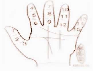 手指痣的位置与命运图解大全