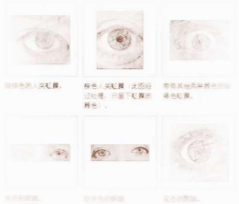 面相眼睛颜色2013-03-05