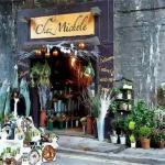 最有創意的花店名字 如何起一個有創意的花店名字