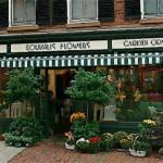 最有创意的花店名字 怎么给花店起名字