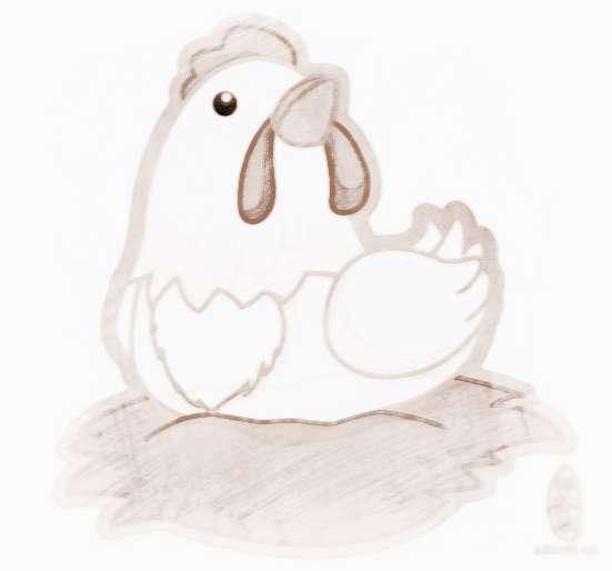 属鸡的宝宝几月出生最好