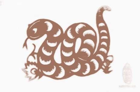 蛇的剪纸步骤图