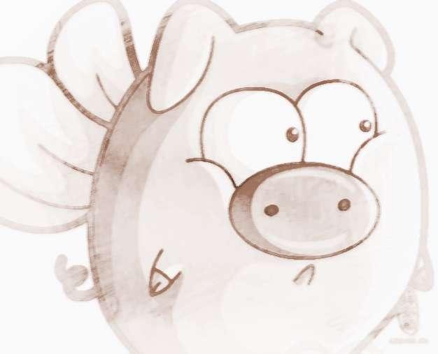生肖猪和十二生肖情感配对
