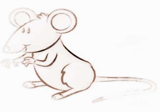 生肖鼠守护神是什么