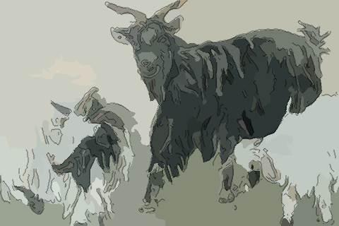 屬羊人2020年運勢及運程精準預測