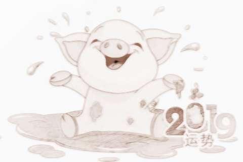 属猪本命年