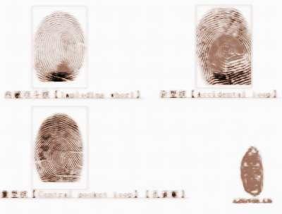 看指紋算命