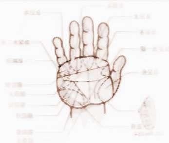 如何看手纹测命运