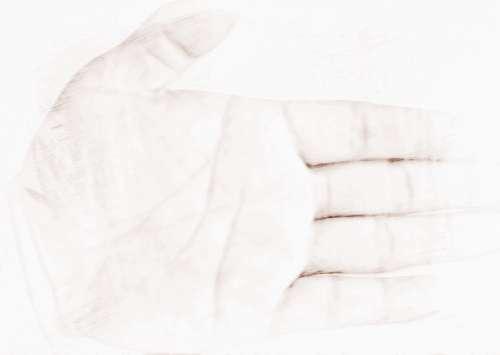 怎么看手相图解断掌的运势