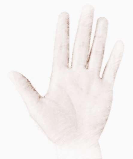 手背�]肉手掌有肉手相解析