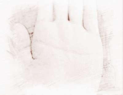 女人断掌纹手相图
