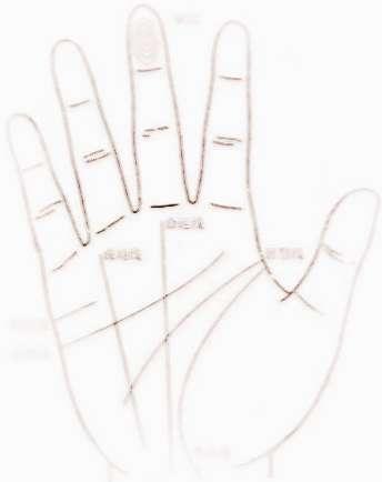 掌纹事业线-我的右手掌纹