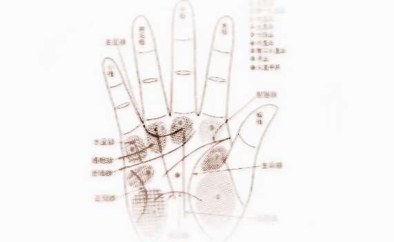 女人左手手相图解:看命运