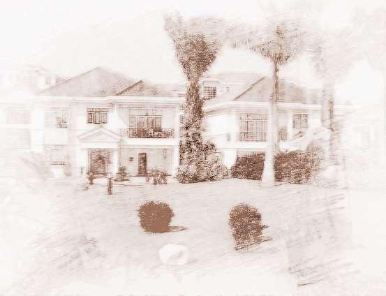 欧式别墅庭院大门豪华柱效果图片