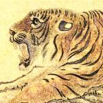 1986年属虎人2022年运势 36岁本命年犯太岁如何化解