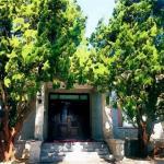 门口种什么树对风水好 门口种树的讲究