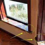 窗台长草风水对家运有何影响