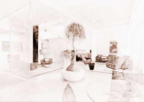 室内植物风水学
