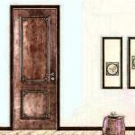 房门对房门有什么讲究吗 对家人运势有何影响