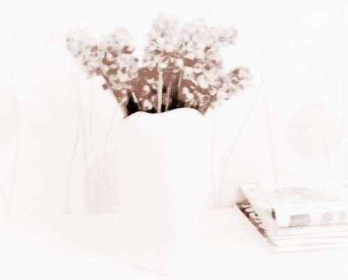 如何用风水花瓶来提升家中的财运?