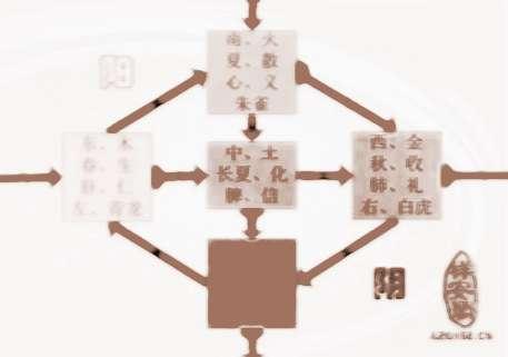 从阴阳五行看身体健康   中医理论认为,人体是一个阴阳五行的系