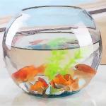 客厅养鱼风水禁忌有哪些