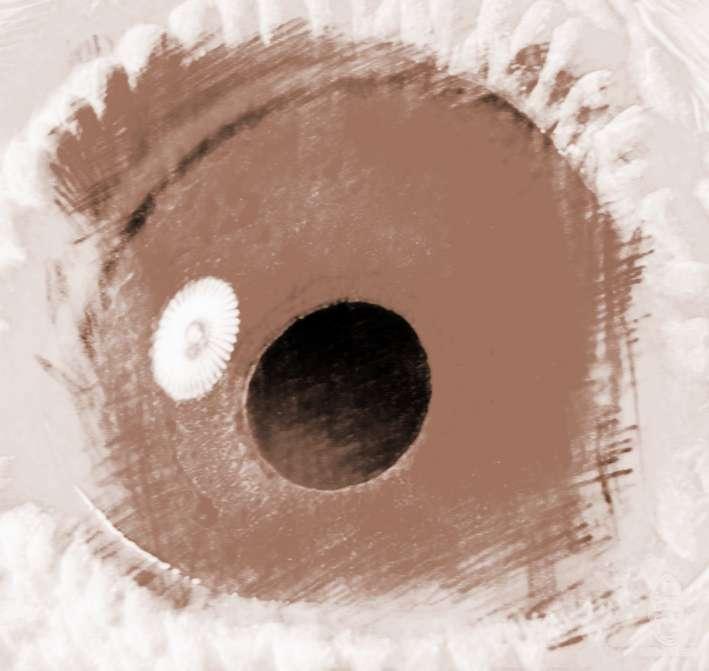 右眼跳是什么征兆