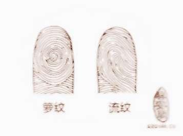 指纹f8t 网线接线图