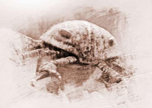 盘点已经灭绝的十大巨型远古生物   已经灭绝的远古生物:奇虾   奇虾是寒武纪时期的古生物,是当时所知体型最大的古生物,而且奇虾很可能是一种肉食性的生物。奇虾的体型可以成长到2米长,其口器就超过25厘米。      已经灭绝的远古生物:布龙度蝎   布龙度蝎希留利亚纪的古生物,是一种可以在海洋和陆地中觅食的古生物,其体长大概在1-3米左右。      已经灭绝的远古生物:莱茵耶克尔鲎   莱茵耶克尔鲎生存于早泥盆纪时期,是一种生活在湖泊中的板足鲎,其体型可以达到2.